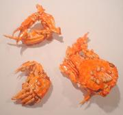 More dried crabs